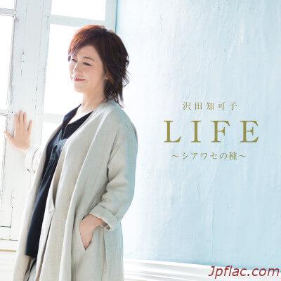 Chikako Sawada - LIFE -Shiawase no Tane- rar